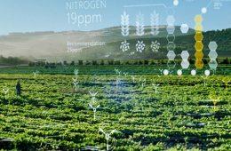 کاربرد هوش مصنوعی برای نظارت بر محصولات زراعی