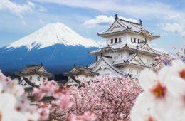 ۱۲ کاری که هرگز نباید در ژاپن انجام دهید