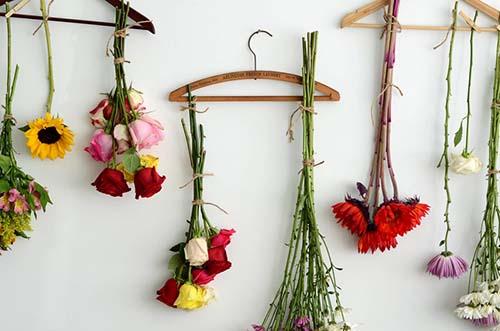 خشک کردن گل طبیعی