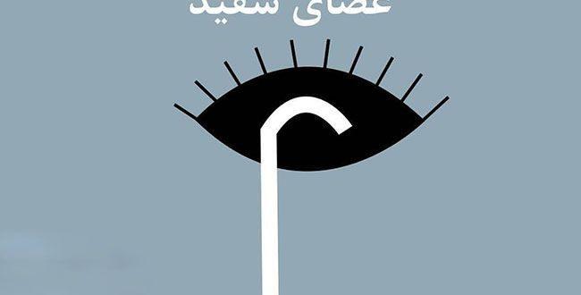 ۲۳ مهر به عنوان روز جهانی نابینایان