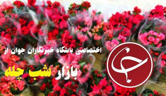 ️ قیمت هرشاخه گل برای شب یلدا