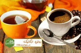 فواید چای یا قهوه؟