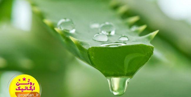  نوشیدنی معجزه آسا برای تقویت چشم