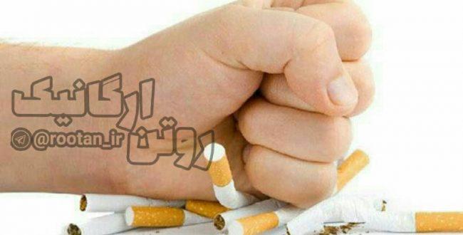 دخانیات ۱۵ سال از عمر انسان می کاهد
