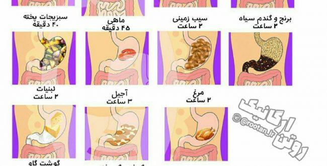 چطور چاق نشیم؟