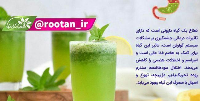 گیاهی برای کمک به هضم غذا و رفع بوی بد دهان
