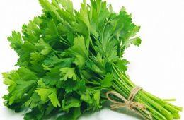 برای درمان سرفه و خلط گلو، سبزی جعفری بهترین داروست