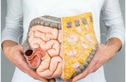 شانههای کلاسیک بروز مشکل در سلامت روده هستند