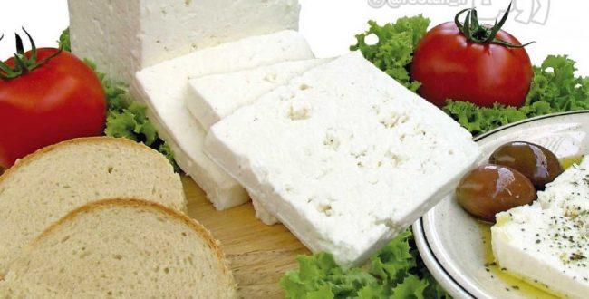 پنیر شامل میلیون ها باکتری خوب است