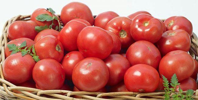 گوجه فرنگی مفید برای نوزادا