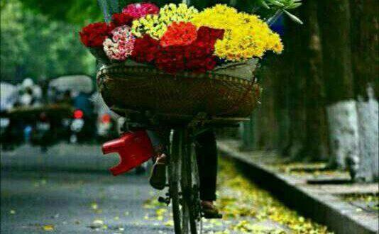 اگر روزی بی منت دلی را شاد کردیبی ریا دستی را گرفتی بی گناه لذت بردی