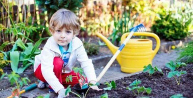 فواید پرورش گل و گیاه در خانه بر روی کودکان