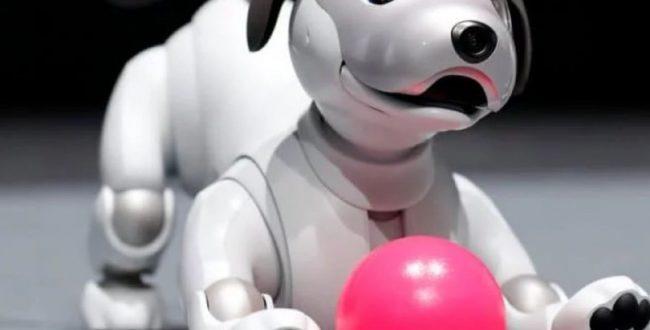 AIBO ️ربات هوش مصنوعی