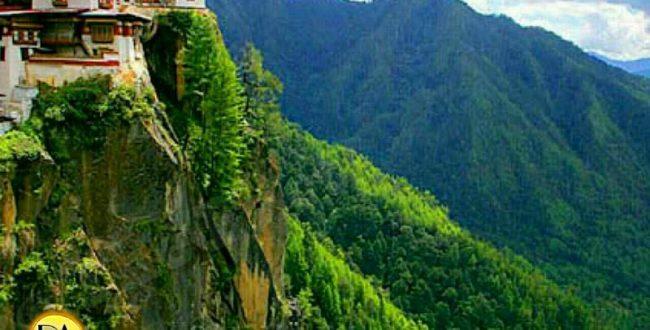 در هیچ زمانی مساحت جنگلها نباید به کمتر از ۶۰% از کل مساحت کشور برسه