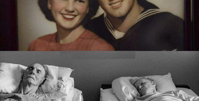 فلوید و وایولت دو عاشق واقعی بودند