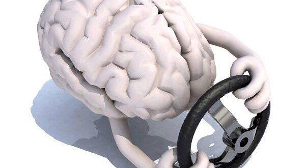 توقف مرگ سلولهای مغزی با فرمان شیمیایی