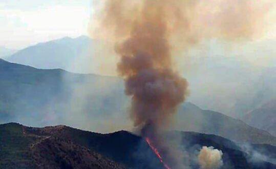 جنگل ارسباران در آتش