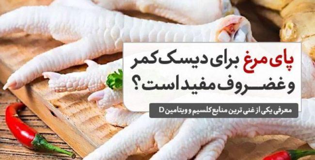 پای مرغ برای دیسک کمر و غضروف